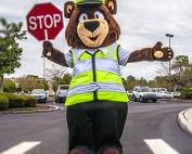 Crossing Bear